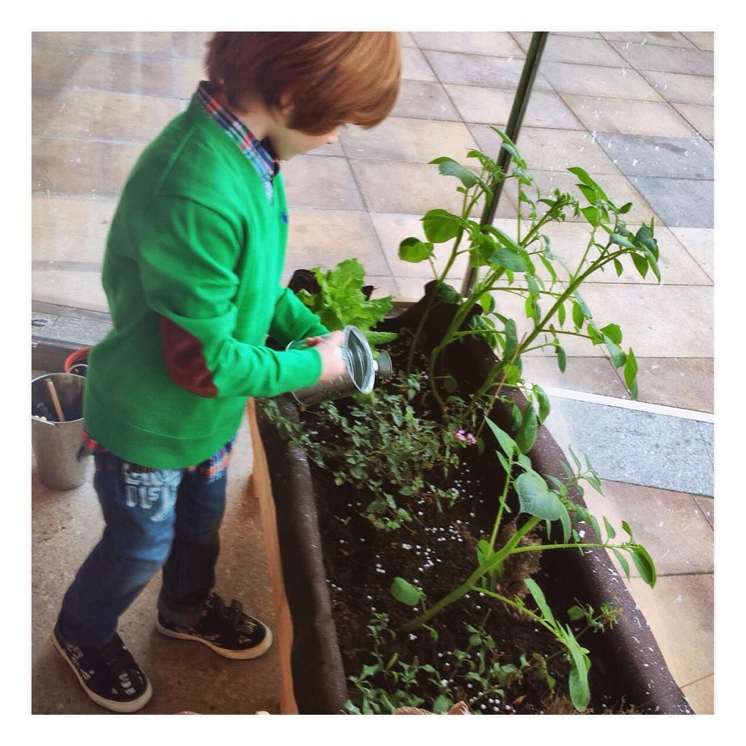 Gardening With Children At My English House